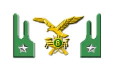 8° Reggimento Alpini - Esercito Italiano 914d503a7db8