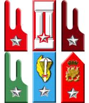 Arma di Fanteria e specialità Arma di Cavalleria ... 23f4cea00cfa